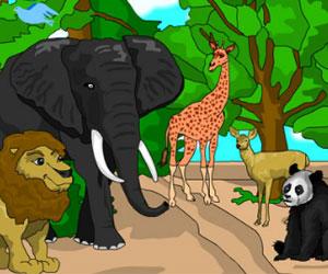 Zwierzeta W Zoo Kolorowanki Online Malowanki Dla Dzieci